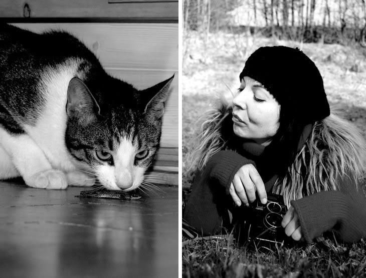 Pierwsze koty za płoty…