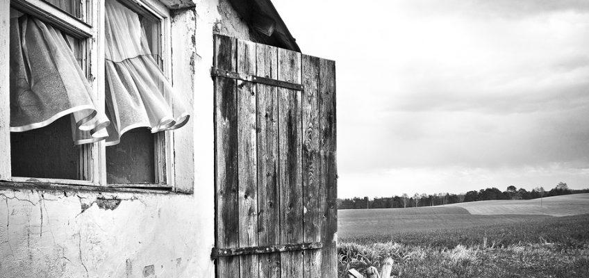 Szukaj wiatru w polu…